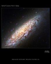 Galaktyka spiralna NGC 6503
