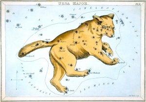 Wielka Niedźwiedzica - z zestawu kart gwiazdozbiorów Samuela Leigha