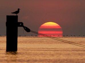 Plama słoneczna widoczna przy wschodzie Słońca 22.05.2016 r.