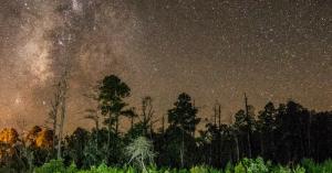 Nocne niebo nad Parkiem Fostera